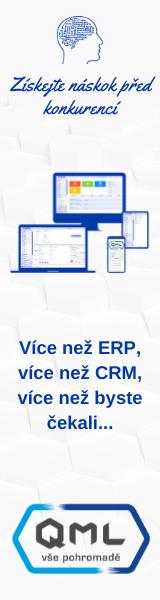 webový podnikový informační systém